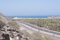 在沙漠的海、路和棕榈树 免版税图库摄影