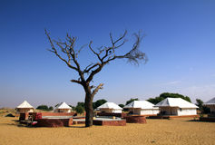 在沙漠附近的帐篷阵营 库存照片