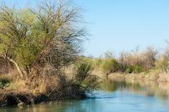 在沙漠附近 沙漠 干草原 河 免版税图库摄影