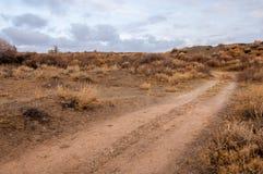 在沙漠附近 沙漠 干草原 库存照片