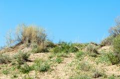 在沙漠附近 沙漠 免版税库存图片