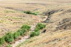 在沙漠附近 沙漠 免版税图库摄影
