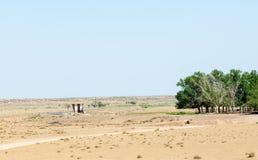 在沙漠附近 沙漠 库存照片