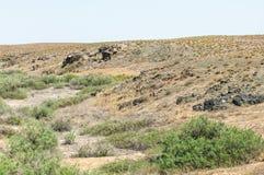在沙漠附近 沙漠 库存图片