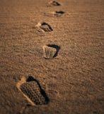 在沙漠,没人的脚印 免版税库存图片