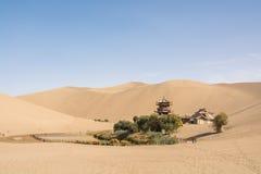 绿洲在沙漠 免版税图库摄影