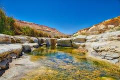 水绿洲在沙漠 免版税图库摄影