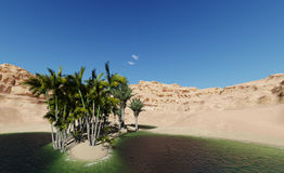 绿洲在沙漠 库存图片