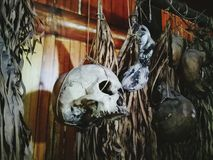 在沙巴博物馆的一块头骨 库存图片