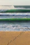 在沙滩的冲浪者脚印与碰撞的绿色波浪后边 免版税图库摄影