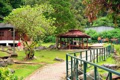 在沙巴,马来西亚的熟读的温泉路 库存图片