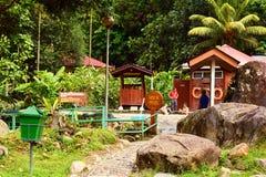 在沙巴,马来西亚的熟读的温泉水池 库存照片