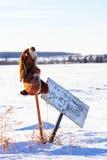 在没有狩猎标志旁边的一只被充塞的兔子 图库摄影