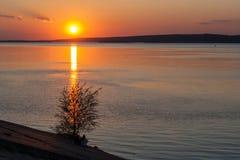 在河伏尔加河的日落从树和前景的人民 城市切博克萨雷 楚瓦什人共和国 俄国 05/11/2016 库存图片