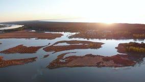 在河利耶卢佩河的空中沼泽在Varnukrogs -金黄小时日落顶视图从上-与常青树的寄生虫射击 股票录像