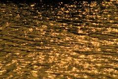 在河发出火花阳光, 免版税图库摄影