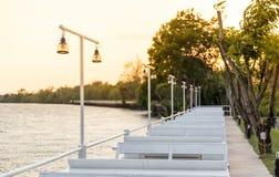 在河和光太阳的灯继续停放观点 免版税库存照片