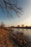 在河和树秋天风景的看法在晴天 免版税库存照片