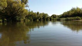 在河在夏天在中午 免版税库存图片