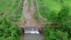 在河小河上的飞行在热带雨林 股票录像