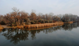 在河岸在秋天 库存图片
