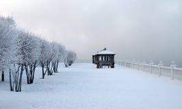 在河岸的冷淡的冬天早晨 用雪盖的观察台 用霜盖的树稀薄的分支  免版税库存图片