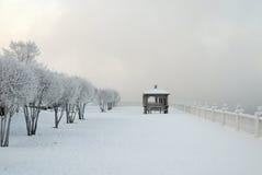 在河岸的冷淡的冬天早晨 用雪盖的观察台 用霜盖的树稀薄的分支  免版税库存照片
