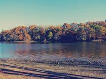 在河岸的凉快的颜色 免版税库存照片