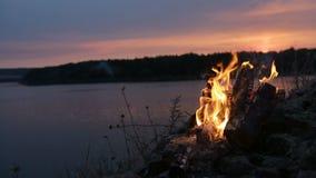 在河岸的大夜篝火 影视素材