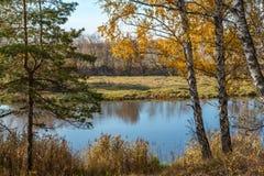 在河岸的秋天横向 免版税图库摄影