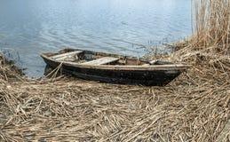 在河岸的老小船春天的 免版税库存照片