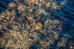 在河床-背景的水流量 免版税图库摄影