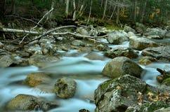 在河急流&瀑布的清早雾 免版税库存照片
