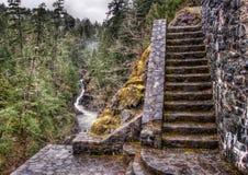 石台阶在河旁边的森林里 免版税库存照片