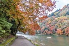 在河旁边的走道在Arashiyama的秋天季节的 免版税图库摄影