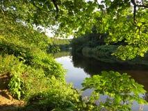 在河旁边 库存照片