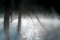 在河日出射击的早晨雾 免版税库存图片