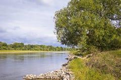 在河易北河的风景在德绍(德国)附近 库存照片