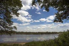 在河河岸在夏天 免版税库存图片