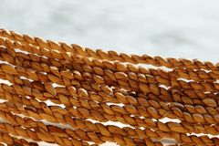 在河沿的香蕉绳索 免版税图库摄影