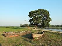 在河海岸的两条老木小船 库存照片