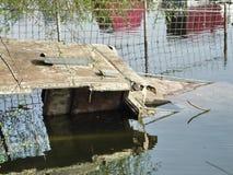 在河淹没的小船 库存图片