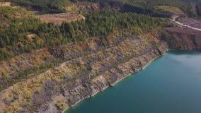 在河湖岸植物的Aerail视图 森林鸟瞰图沿蓝色湖边缘的  绿色森林河岸 股票录像