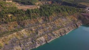 在河湖岸植物的Aerail视图 森林鸟瞰图沿蓝色湖边缘的  绿色森林河岸 股票视频