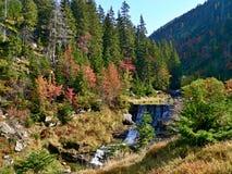 在河白色易北河的捷克瀑布 免版税库存照片