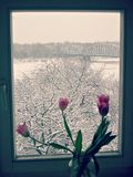 """在河的一层舱内甲板多雪的ToruÅ """"的,波兰 库存照片"""