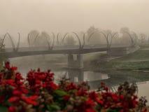 在河的一座桥梁 免版税库存照片