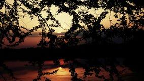 在河的下沉的太阳 库存图片
