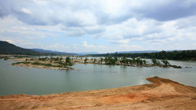 在河的中间名的结构树 免版税库存照片