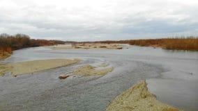 在河的低飞行的寄生虫有岩石的 股票录像